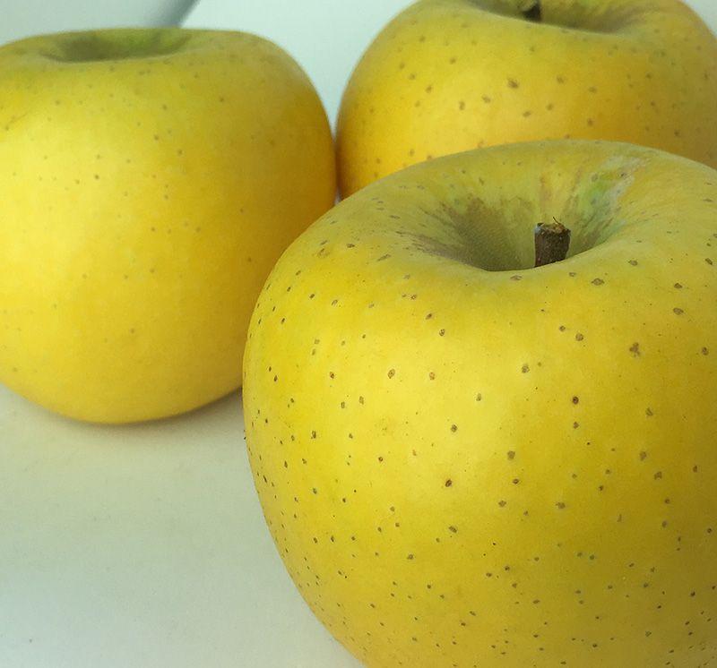 長野のりんご通販サイト