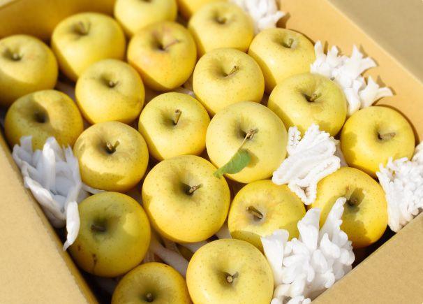 長野県小布施町・産地直送通販ショップ|Su-eat Farm(スイートファーム)なら大切な方への送りものにもぴったり