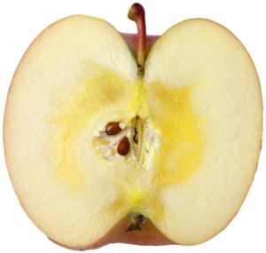 長野県小布施町・産地直送のりんご通販ショップ|Su-eat Farm APPLE(スイートファーム・アップル)|sanhuji_04
