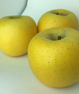 長野県小布施町・産地直送のりんご通販ショップ|Su-eat Farm APPLE(スイートファーム・アップル)|shinanogold_05