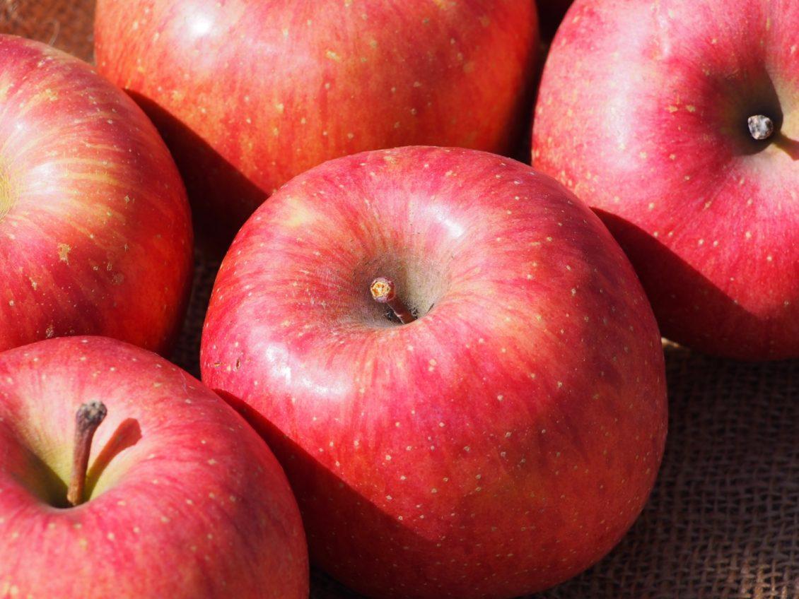 長野県小布施町・産地直送のりんご通販ショップ|Su-eat Farm APPLE(スイートファーム・アップル)|サンふじ