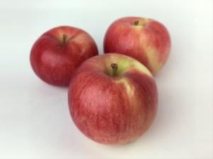 長野県小布施町・産地直送のりんご通販ショップ|Su-eat Farm APPLE(スイートファーム・アップル)|夏あかり
