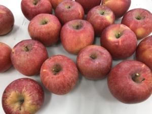 りんごの 品質管理 会議
