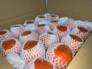 甘柿も出荷してます